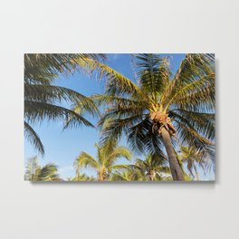 The View From The Chair Metal Print