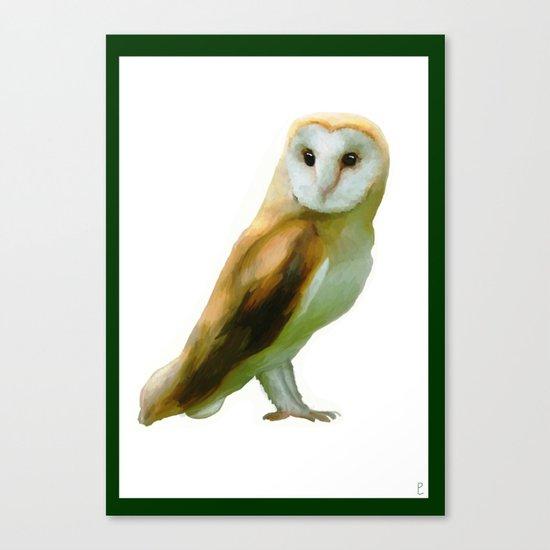 The Barn Owl Canvas Print