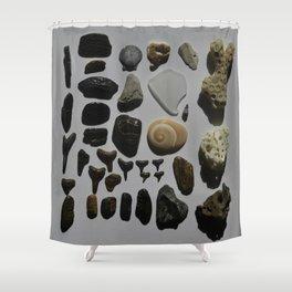 Beach Day Fossils Shower Curtain