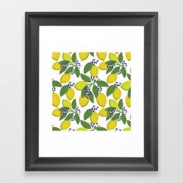 Sprigs of lemon . Framed Art Print