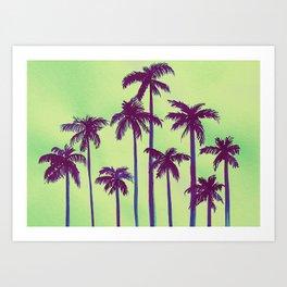 Palm Envy Art Print