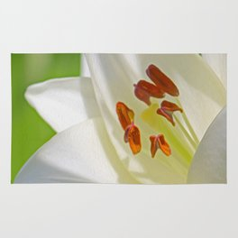 White Lily (Digital Art) Rug