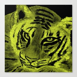 Tiger with Lime Background Canvas Print