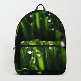Dew Drops Backpack