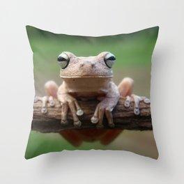 Hypsiboas Frog Throw Pillow