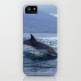 Wild and free bottlenose dolphin iPhone Case