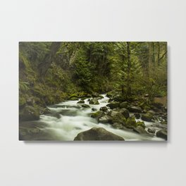 Rios de Oregon 1 Metal Print