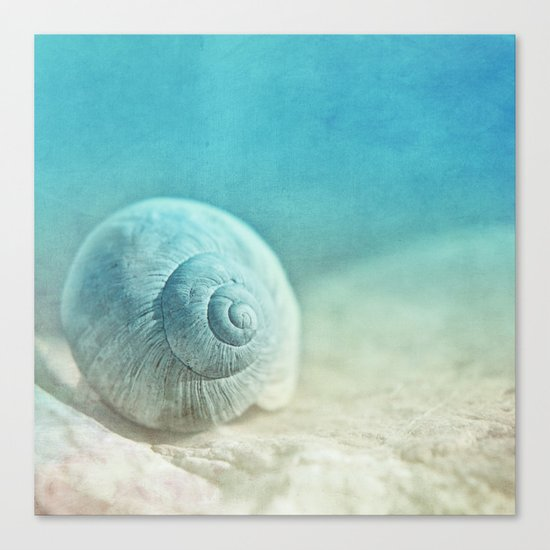 APRICOTEE | Blue version Canvas Print