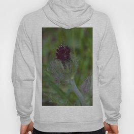 Floral Print 070 Hoody