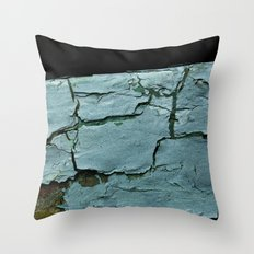 The Way it Was Throw Pillow