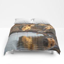 Reflections 5 Comforters