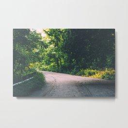 The green road Metal Print
