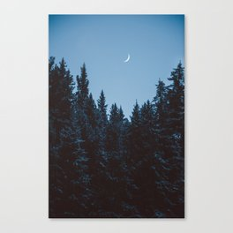 Crescent III Canvas Print
