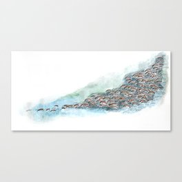 watercolor and pen herd Canvas Print