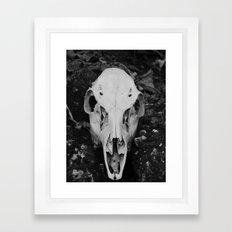 deer skull III Framed Art Print