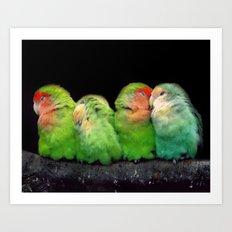 LITTLE BIRDS - animal collection Art Print
