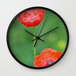 Two wet red poppies Wall Clock