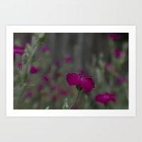 Deep Pink Flower Art Print