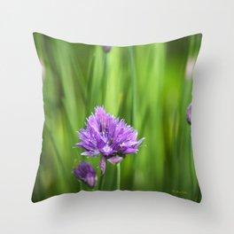 Garden Herbs Throw Pillow