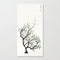 mudra Canvas Print