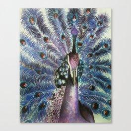 Violet Pride Canvas Print