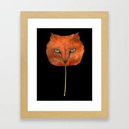 Autumn Cat-4 Framed Art Print