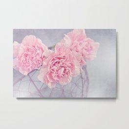 Pale Pink Carnations Metal Print