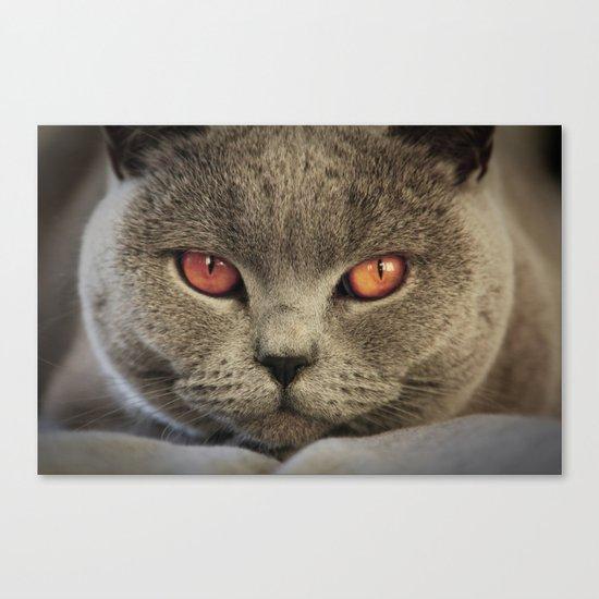 Tomcat Diesel Canvas Print