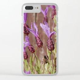 French Lavender (Lavandula stoechas) Clear iPhone Case