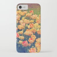 tulips iPhone & iPod Cases featuring Tulips  by Juliana RW
