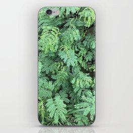 Leafy Gaze iPhone Skin