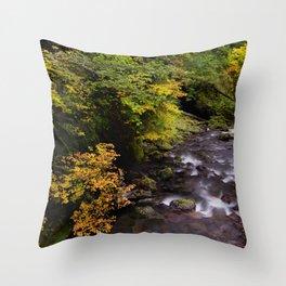 Columbia River Gorge Region, Oregon River Color Photo Footbridge River in an Oregon Forest Throw Pillow