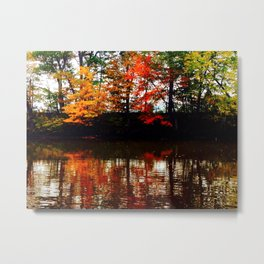 All Four Seasons Metal Print