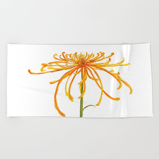 one orange chrysanthemum Beach Towel