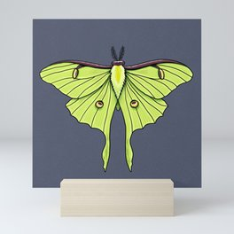 Luna Moth Mini Art Print
