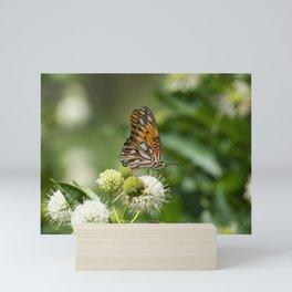 Profile of beautiful orange Gulf Fritillary Butterfly Mini Art Print