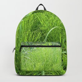 Watercolor Forb, Field Horsetail 01, Boulder, Colorado Backpack