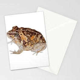 Plump Little Froggy Stationery Cards
