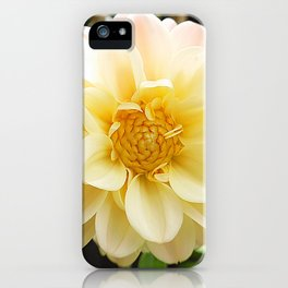 Dahlia Photo iPhone Case