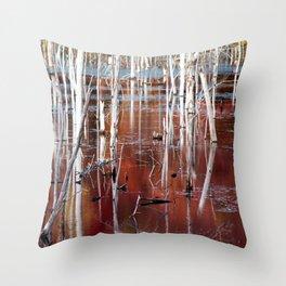 Automn Swamp Throw Pillow