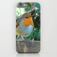 Curious Robin iPhone 6s Slim Case