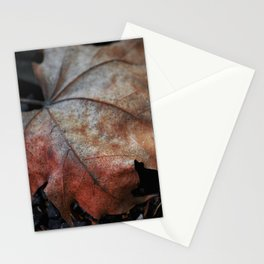 The Leftovers Stationery Cards