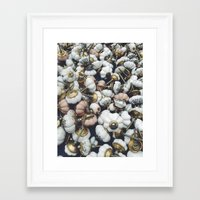 antique Framed Art Prints featuring antique  by n o a h