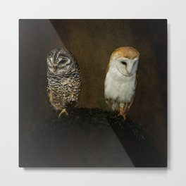 Barn And Tawny Owl Metal Print