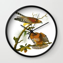 Red-shouldered Hawk Wall Clock