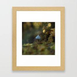 LAKE MATHESON MUSHROOM Framed Art Print