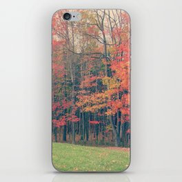 Trees please iPhone Skin