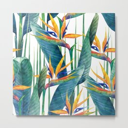 Watercolor strelitzia Metal Print