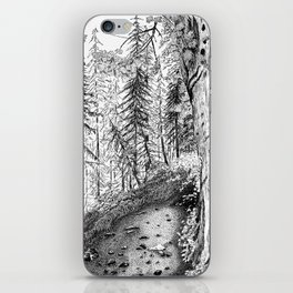 On the Trail iPhone Skin