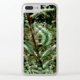 Spring time Pussy Willows.... Clear iPhone Case